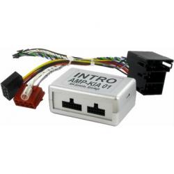 Intro AMP-KiA01